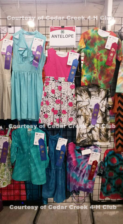A photo of some Antelope County sewing projects at the State Fair.
