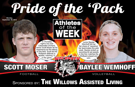 aotw-bayleescott-willows-poster-online-2