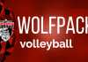 EPPJ Wolfpack Elgin Public School Pope John XXIII Central Catholic High School Elgin, Nebraska Antelope County Nebraska Wolfpack high school volleyball